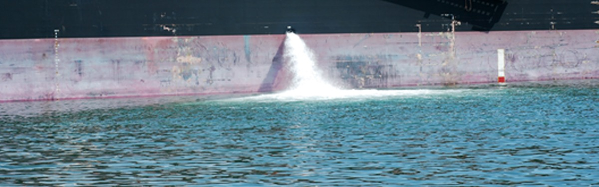 Addressing invasive species in ships' ballast water - treaty amendments enter into force